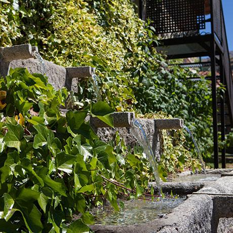 jardines-la-majada-de-penacorada